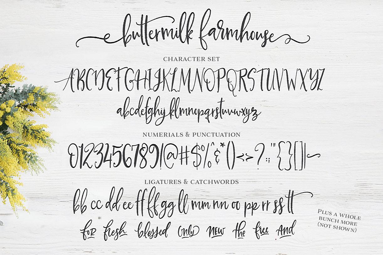 Buttermilk Farmhouse Font Family by Make Media Co : Font Bros