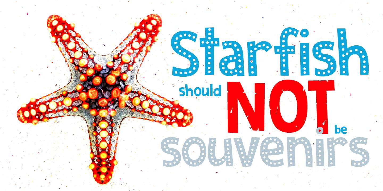 Zombie Starfish