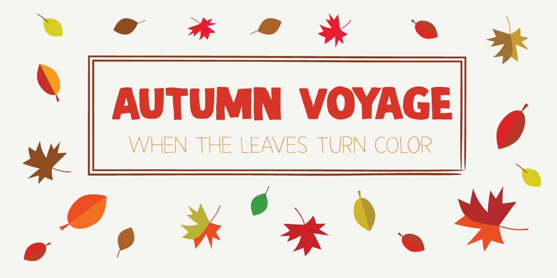 Autumn Voyage Regular