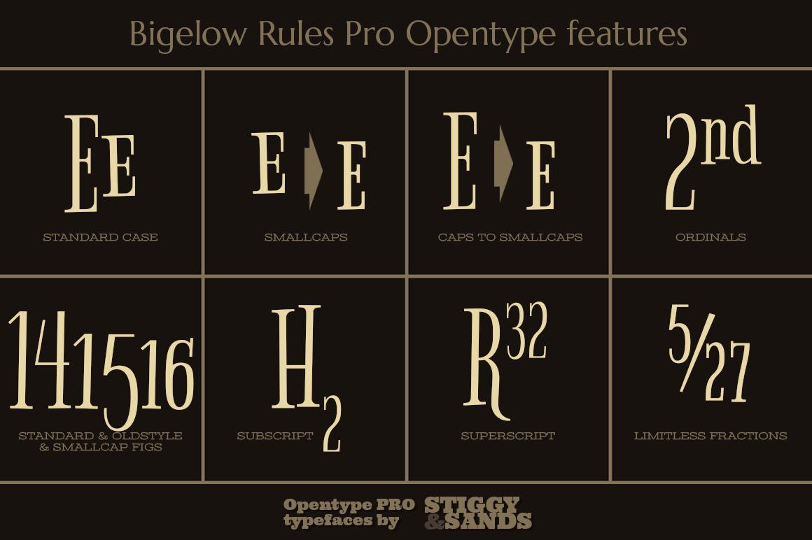 Bigelow Rules Pro