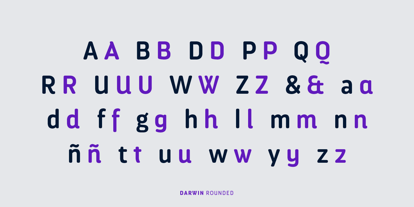 Darwin Pro Rounded