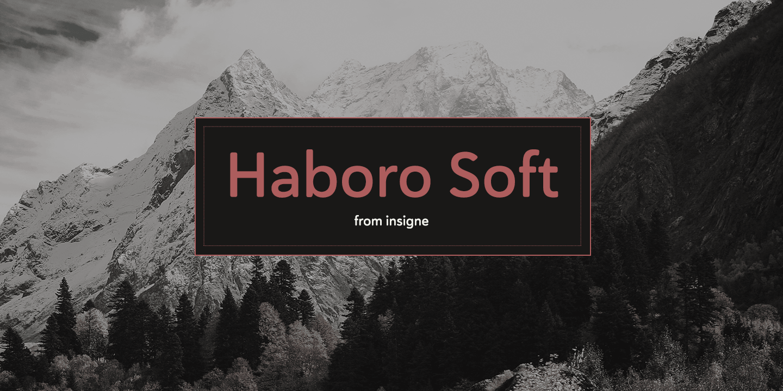 Haboro Soft Norm Regular