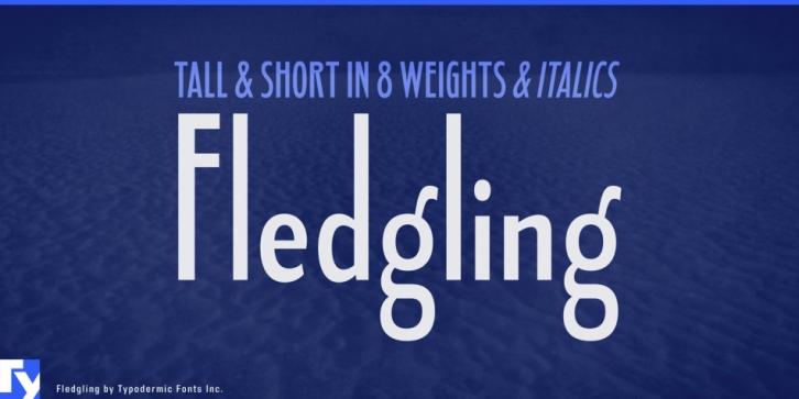 Fledgling sb