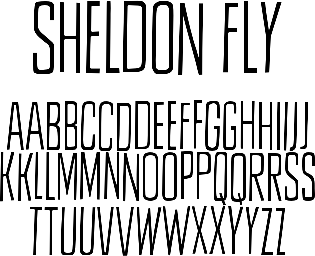 Sheldon Fly